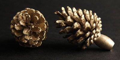 Brass-pinecone-knobs
